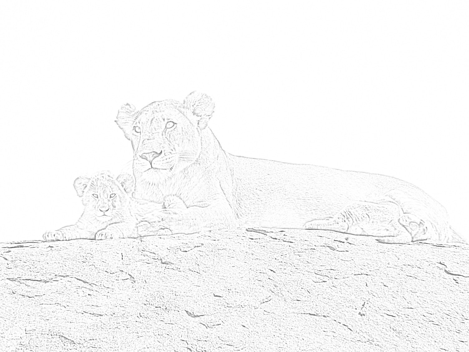 Lioness with Cub Coloring Page