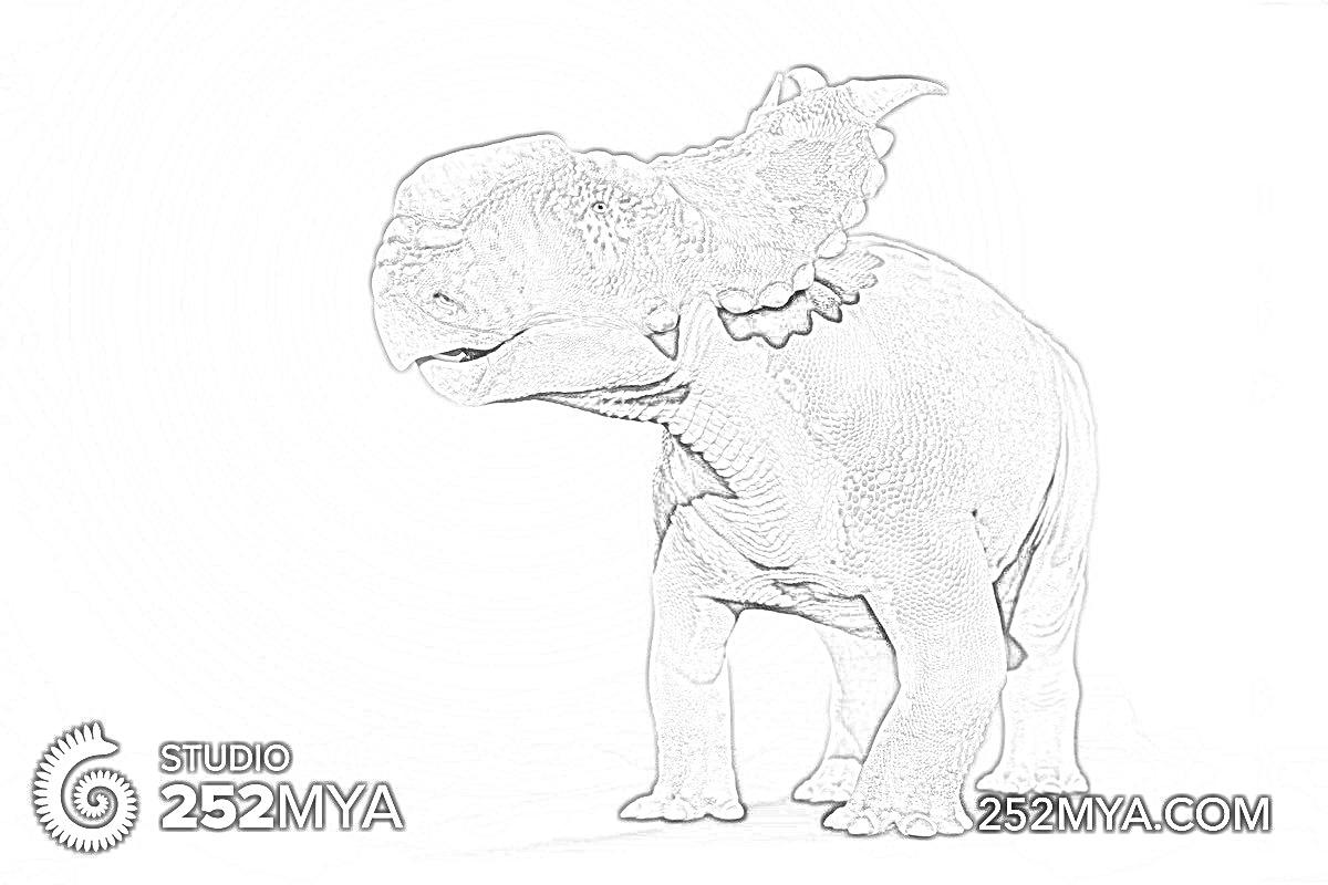 Pachyrhinosaurus Coloring Page