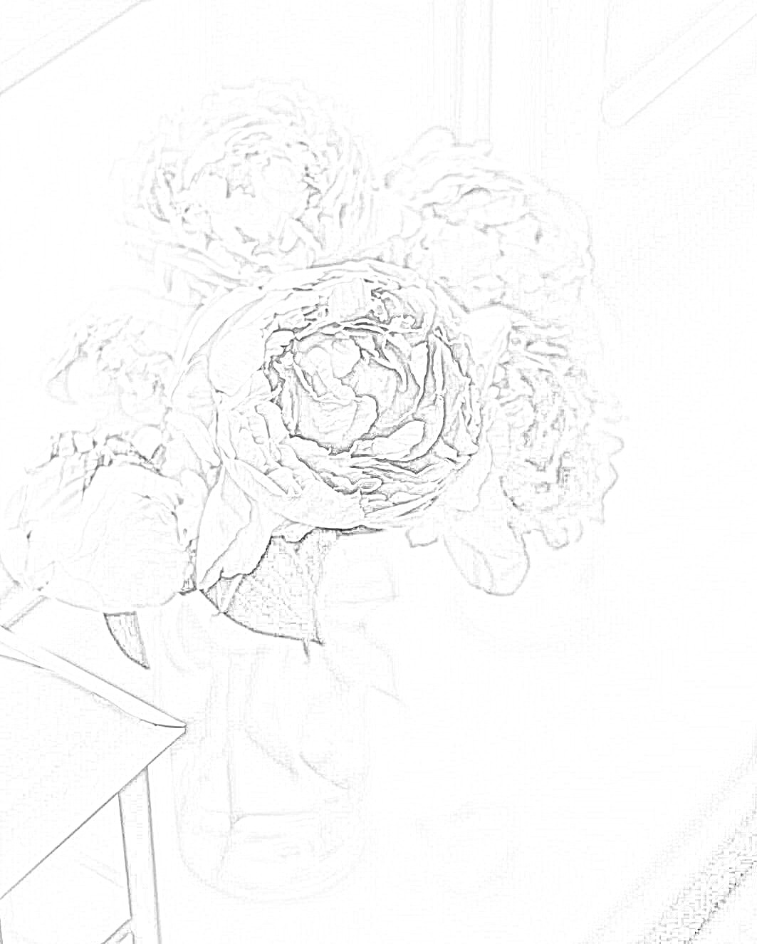 Peony Flowers Coloring Page