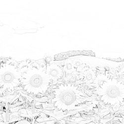 Sunflowers - Coloring page