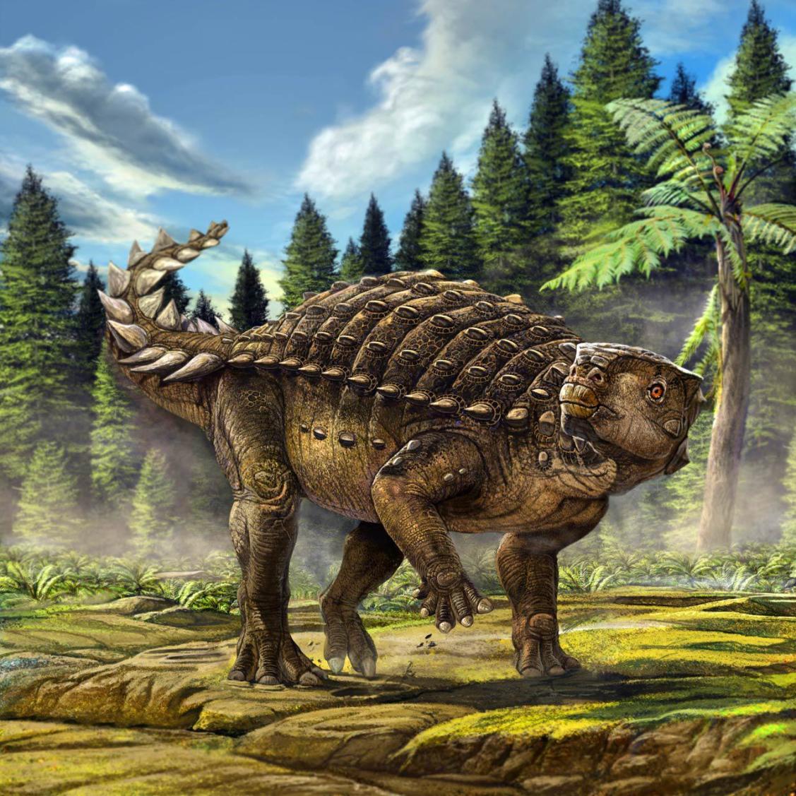 Minmi Dinosaur - Original image