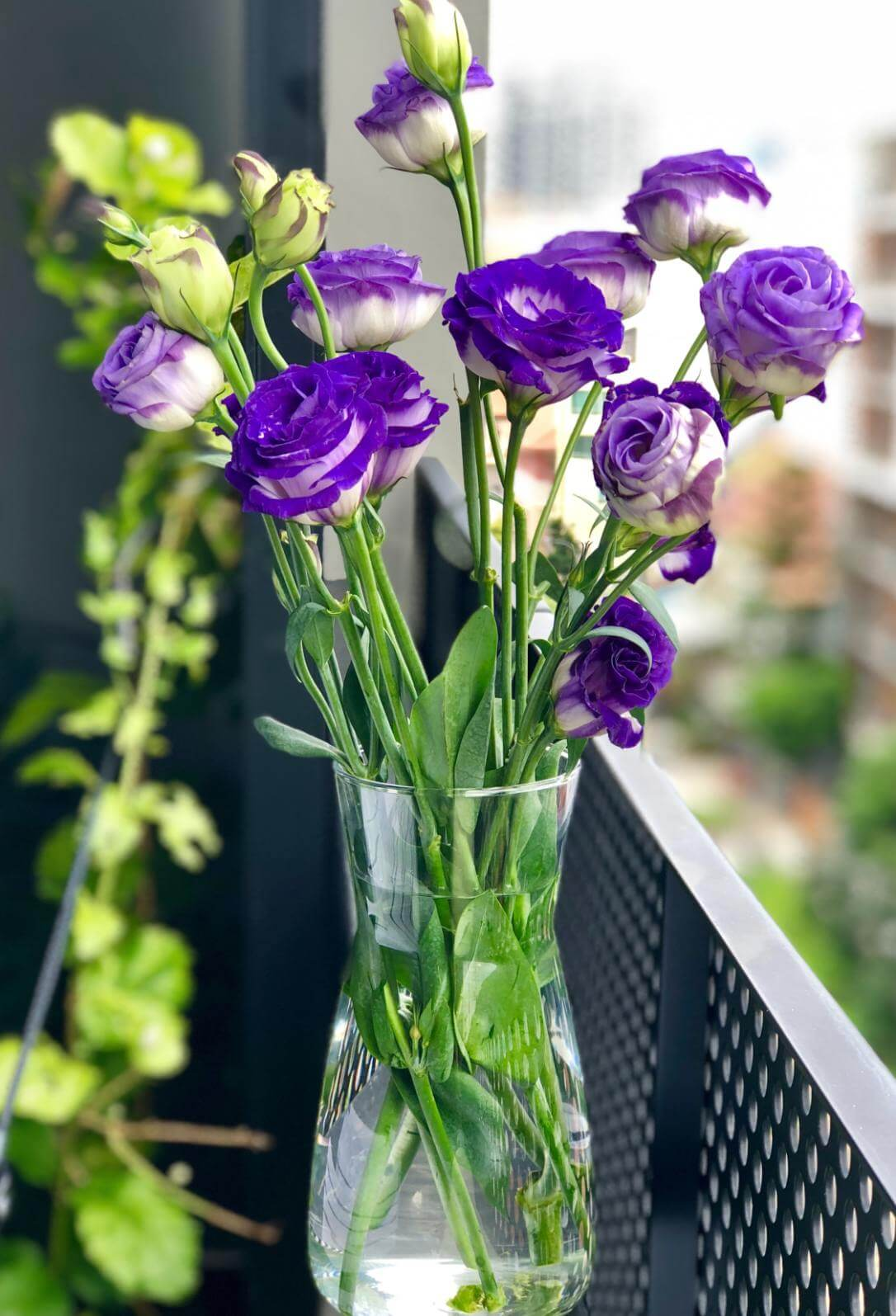 Purple Flowers In a Vase - Original image