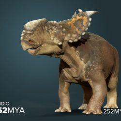 Pachyrhinosaurus - Origin image