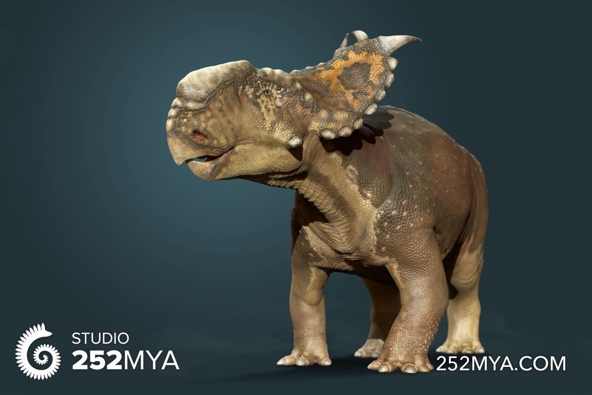 Pachyrhinosaurus - Original image