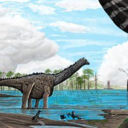 Tapuiasaurus - Origin image