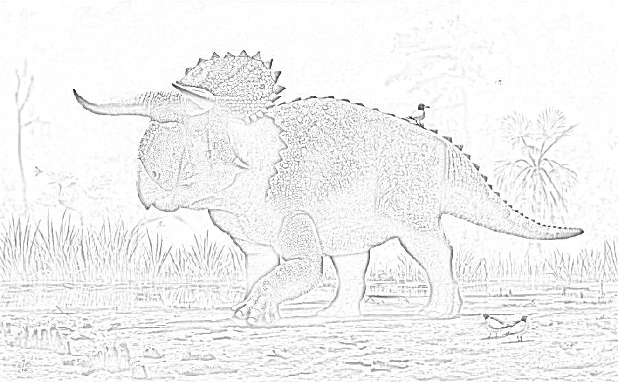 Free Nasutoceratops Coloring Page