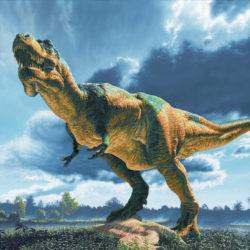 Sauropelta dinosaur - Origin image