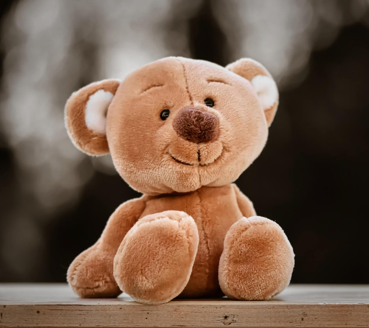 Teddy bear - Original image